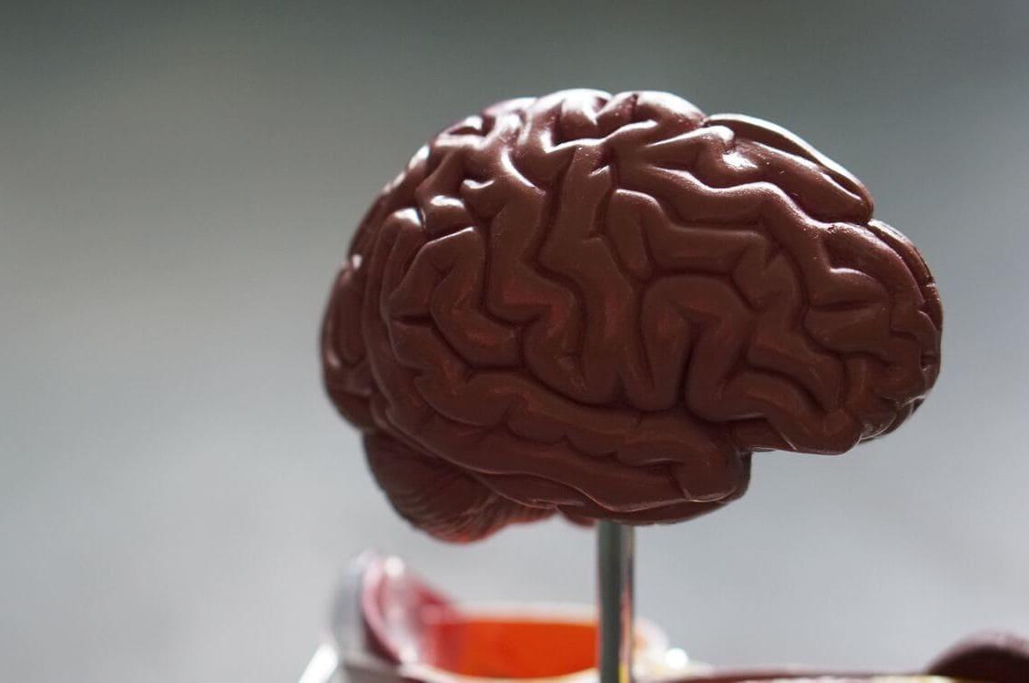 Neuromarketing, una herramienta de medición del comportamiento del consumidor